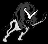 Berlin Buffalos e. V.