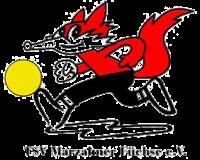 Turn- und Sportverein Marzahner Füchse e. V.